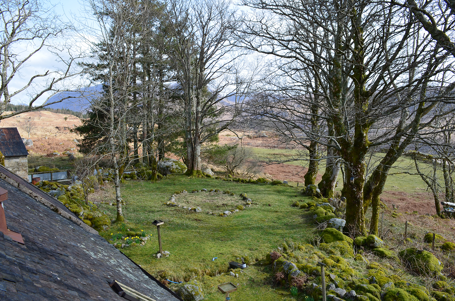 dail garden from roof 1