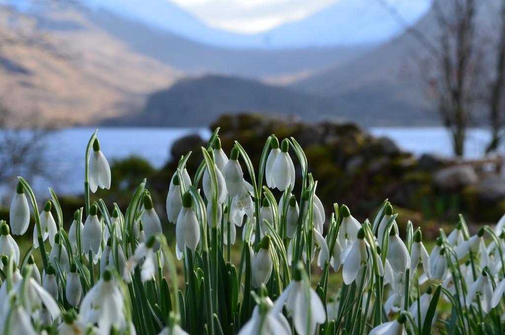 Winter on Loch Etive